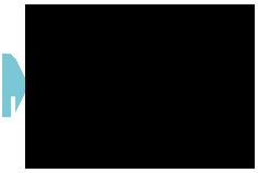 VDMB Logo